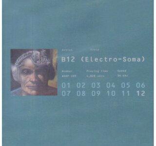【レビュー】B12「ELECTRO SOMA」TR-909の音色が特徴的な、デトロイトの影響を受けたアンビエントテクノ