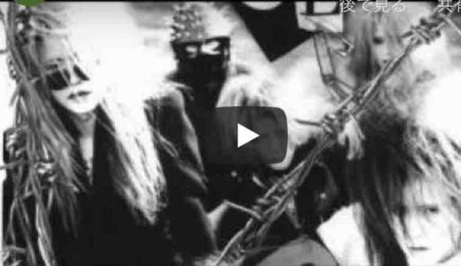 TATSUYA(COLOR)のテクニックとギターサウンド!動画で振り返る(新実辰弥・NiimiTatsuya)